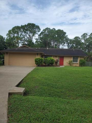 748 Isar Avenue NW, Palm Bay, FL 32907 (MLS #890161) :: Premium Properties Real Estate Services