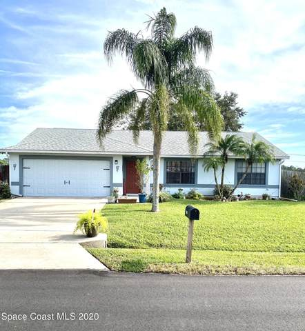 941 SE Grapefruit Road SE, Palm Bay, FL 32909 (MLS #892183) :: Premier Home Experts