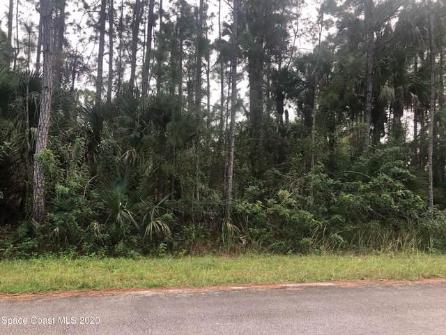 1184 Hathaway Road SW, Palm Bay, FL 32908 (MLS #894167) :: Blue Marlin Real Estate