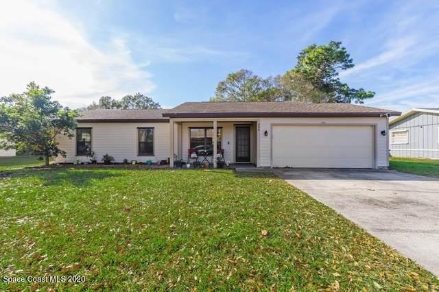 256 Wavecrest Avenue NE, Palm Bay, FL 32907 (MLS #894402) :: Blue Marlin Real Estate