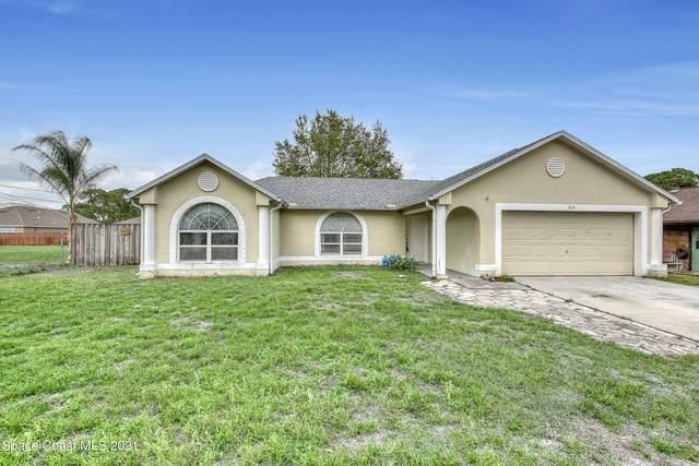 613 Antigua Street NE, Palm Bay, FL 32907 (MLS #898443) :: Blue Marlin Real Estate