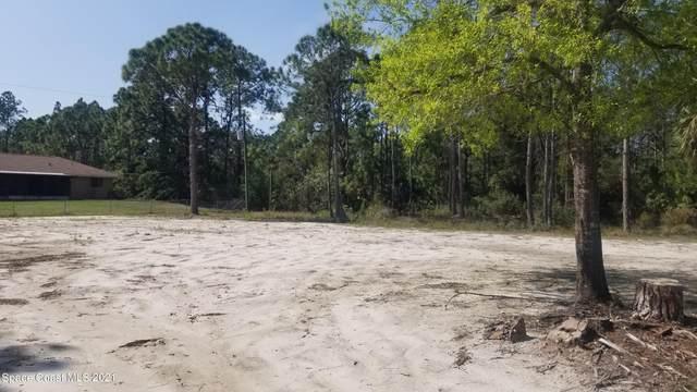 0000 Sandia Road SE, Palm Bay, FL 32909 (MLS #898620) :: Armel Real Estate