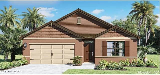 3650 Peony Court SE, Palm Bay, FL 32908 (MLS #901353) :: Engel & Voelkers Melbourne Central