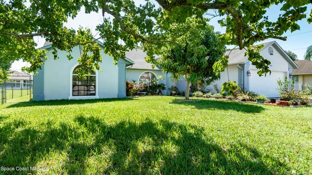 1251 Bluff Avenue NE, Palm Bay, FL 32907 (MLS #911277) :: Vacasa Real Estate