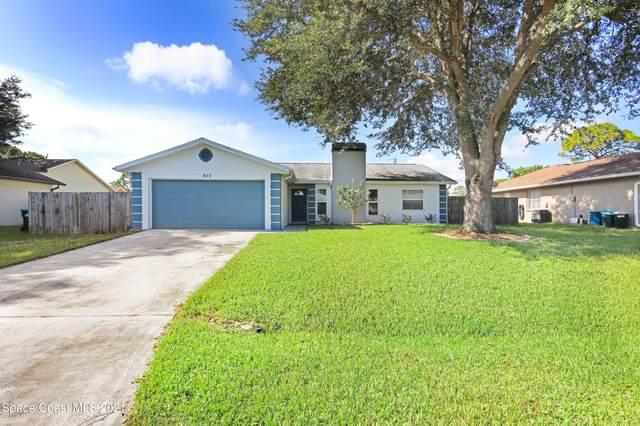 850 Hamm Street NW, Palm Bay, FL 32907 (MLS #911801) :: Blue Marlin Real Estate