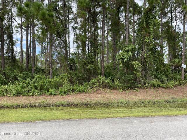 817 Geddes Street SW, Palm Bay, FL 32908 (MLS #915128) :: Keller Williams Realty Brevard