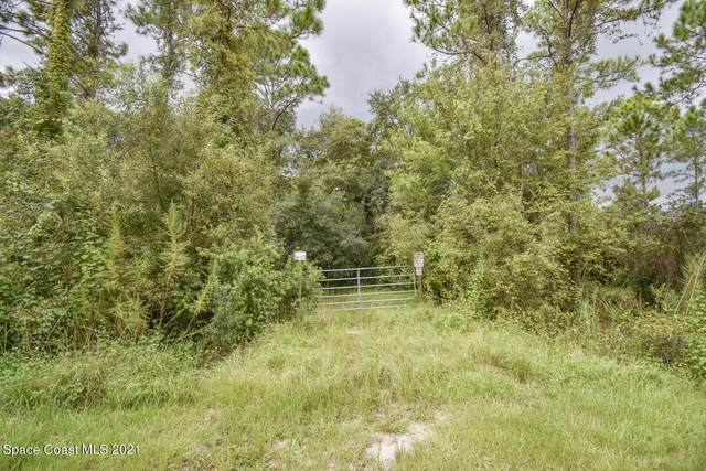 1400 Gopher Slough Road, Mims, FL 32754 (MLS #916302) :: Keller Williams Realty Brevard