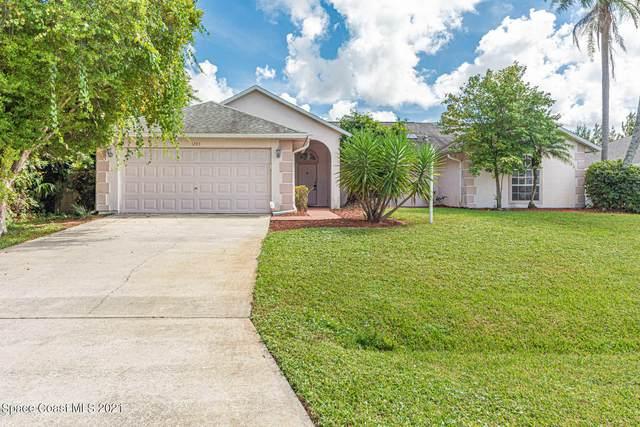 1283 Bluff Avenue NE, Palm Bay, FL 32907 (MLS #917301) :: Keller Williams Realty Brevard