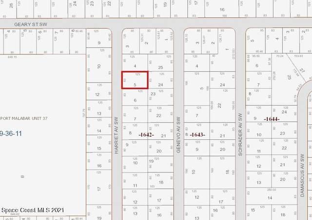 723 Harriet Avenue SW, Palm Bay, FL 32908 (MLS #918377) :: Engel & Voelkers Melbourne Central