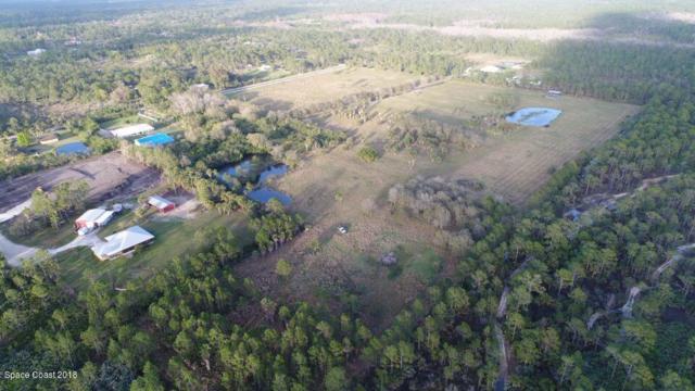 1 Ramblebrook Street, Grant, FL 32949 (MLS #797575) :: Better Homes and Gardens Real Estate Star