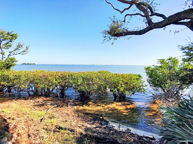 5205 S Tropical Trail, Merritt Island, FL 32952 (MLS #879922) :: Blue Marlin Real Estate