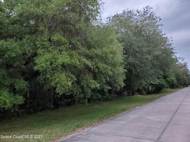 5520 Canvasback Drive, Mims, FL 32754 (MLS #902471) :: Armel Real Estate