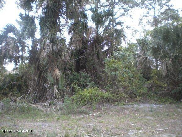 0 Kings Highway/Batavia, Port Saint John, FL 32927 (MLS #806010) :: Pamela Myers Realty