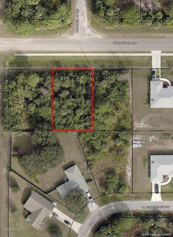 684 Osmosis Drive SW, Palm Bay, FL 32908 (MLS #806192) :: Pamela Myers Realty
