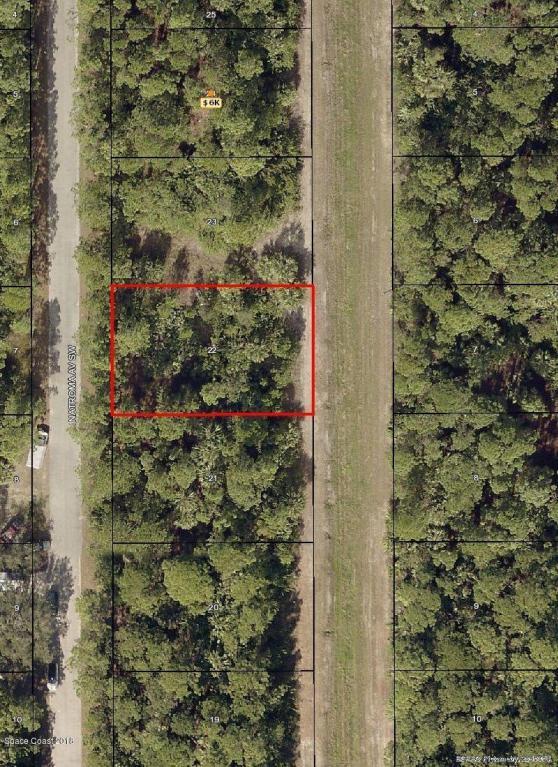 843 Natroma Avenue SW, Palm Bay, FL 32908 (MLS #806194) :: Pamela Myers Realty