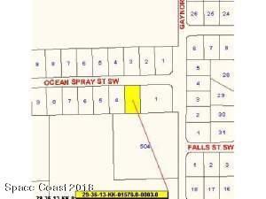 522 SW Ocean Spray Street SW, Palm Bay, FL 32908 (MLS #808595) :: Premium Properties Real Estate Services