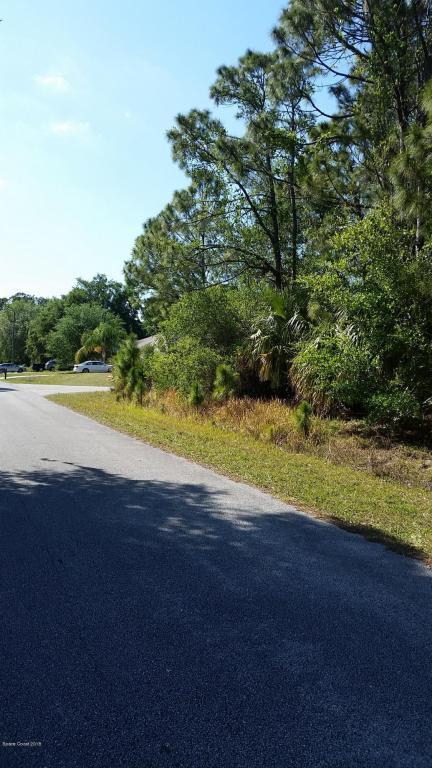 661 S Merrimac Street SE, Palm Bay, FL 32909 (MLS #808952) :: Pamela Myers Realty