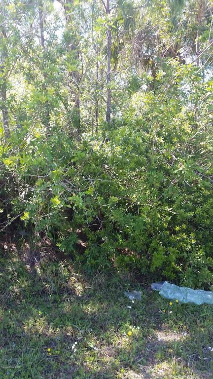 962 SE Husted Avenue SE, Palm Bay, FL 32909 (MLS #808954) :: Pamela Myers Realty