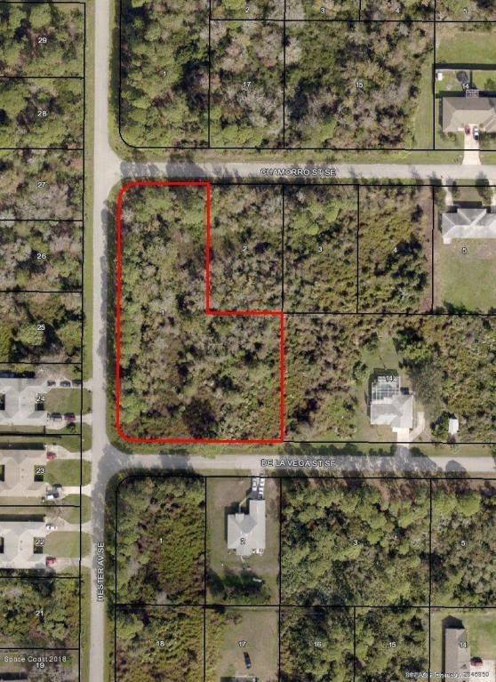 0 Chamorro, Palm Bay, FL 32909 (MLS #811197) :: Better Homes and Gardens Real Estate Star