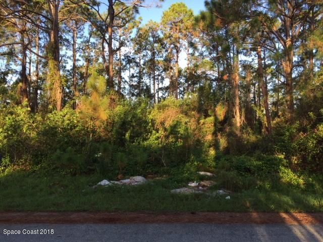 1114 SE Underhill Avenue SE, Palm Bay, FL 32909 (MLS #811385) :: Pamela Myers Realty