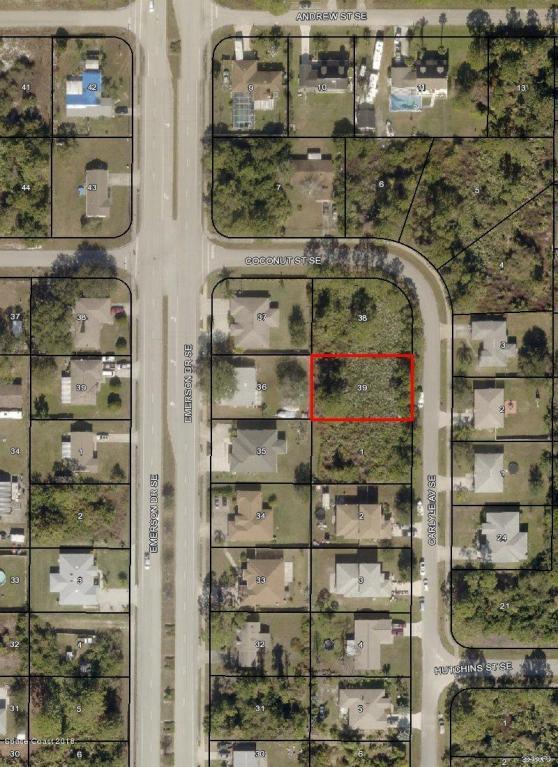 710 Carlyle Avenue SE, Palm Bay, FL 32909 (MLS #812043) :: Premium Properties Real Estate Services