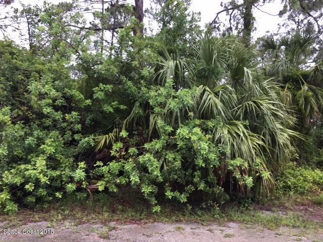1350 SE Wade Street SE, Palm Bay, FL 32909 (MLS #819307) :: Pamela Myers Realty