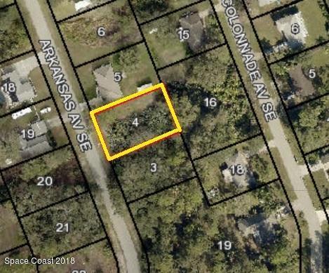 1109 Arkansas Avenue SE, Palm Bay, FL 32909 (MLS #823831) :: Pamela Myers Realty