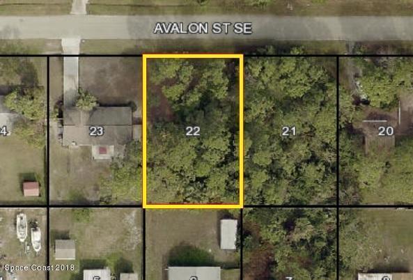 780 Avalon Street SE, Palm Bay, FL 32909 (MLS #824912) :: Pamela Myers Realty