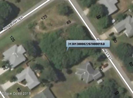 449 Watercrest Street, Sebastian, FL 32958 (MLS #825261) :: Pamela Myers Realty