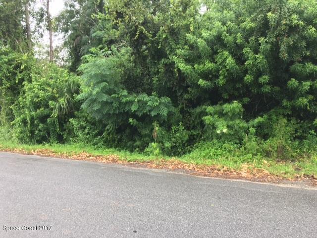 000 Bay Avenue, Cocoa, FL 32922 (MLS #845716) :: Pamela Myers Realty
