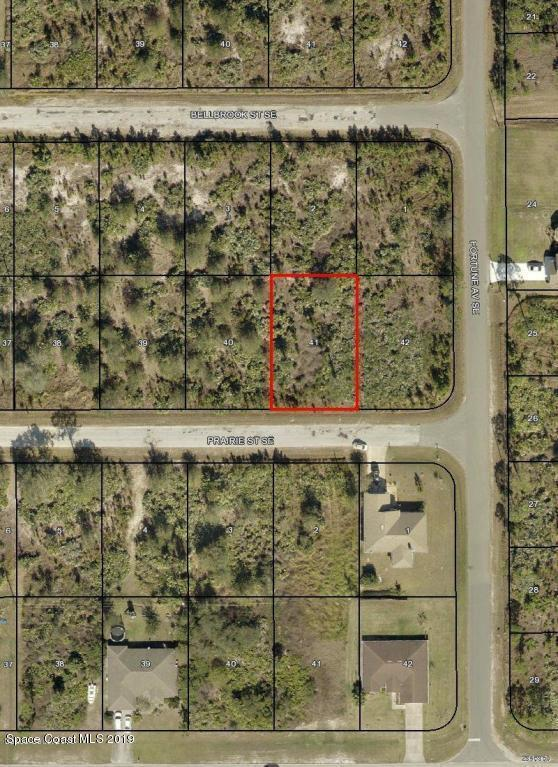 289 Prairie Street SE, Palm Bay, FL 32909 (MLS #848382) :: Pamela Myers Realty