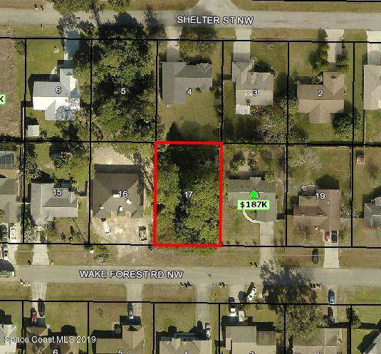 1631 Wake Forest Road NW, Palm Bay, FL 32907 (MLS #855947) :: Pamela Myers Realty