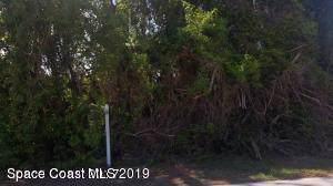 1865 Newfound Harbor Drive, Merritt Island, FL 32952 (MLS #861190) :: Premium Properties Real Estate Services