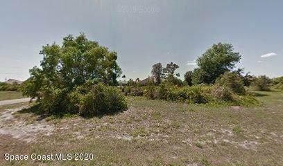 2341 Prague Lane, Punta Gorda, FL 33983 (MLS #867682) :: Premium Properties Real Estate Services