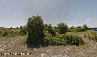 2333 Prague Lane, Punta Gorda, FL 33983 (MLS #867698) :: Premium Properties Real Estate Services