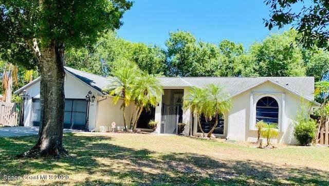 1299 Douglas Street SE, Palm Bay, FL 32909 (MLS #872163) :: Armel Real Estate