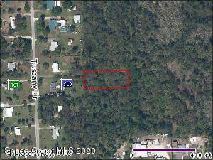 0000 Unknown, Mims, FL 32754 (MLS #876608) :: Armel Real Estate