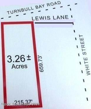 0 Lewis Lane - Photo 1