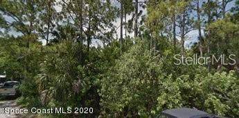 1842 Canova Street SE, Palm Bay, FL 32909 (MLS #879315) :: Premium Properties Real Estate Services