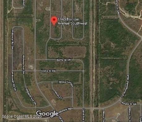 1943 Blanton Avenue SW, Palm Bay, FL 32908 (MLS #882757) :: Blue Marlin Real Estate