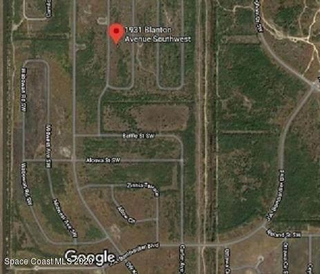 1931 Blanton Avenue SW, Palm Bay, FL 32908 (MLS #882759) :: Blue Marlin Real Estate