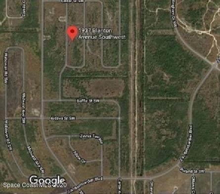 1937 Blanton Avenue SW, Palm Bay, FL 32908 (MLS #882760) :: Blue Marlin Real Estate