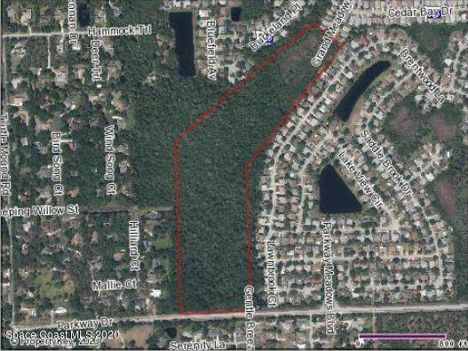 0 Parkway Drive, Melbourne, FL 32934 (MLS #885091) :: Blue Marlin Real Estate