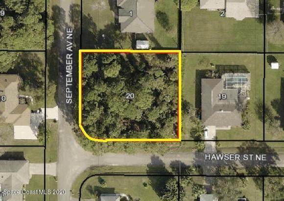 705 Hawser Street NE, Palm Bay, FL 32907 (MLS #885662) :: Blue Marlin Real Estate