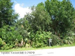 151 Eureka Avenue NE, Palm Bay, FL 32907 (MLS #885934) :: Blue Marlin Real Estate