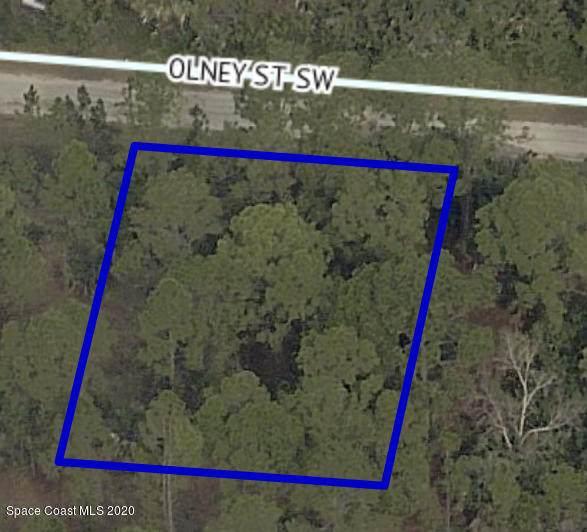 550 Olney Street SW, Palm Bay, FL 32908 (MLS #886273) :: Blue Marlin Real Estate