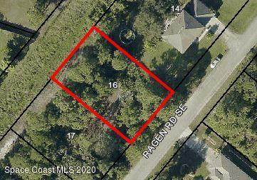 1219 Ragen Road SE, Palm Bay, FL 32909 (MLS #886562) :: Premium Properties Real Estate Services