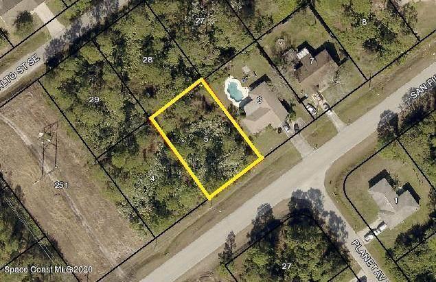 2290 San Filippo Drive SE, Palm Bay, FL 32909 (MLS #886745) :: Premium Properties Real Estate Services