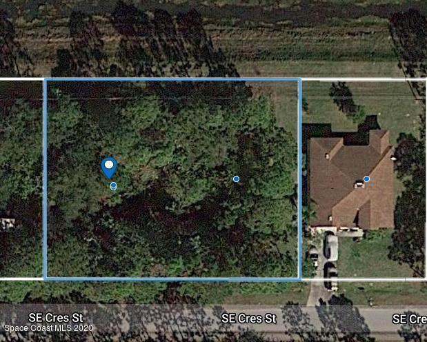 199 Crescent Street SE, Palm Bay, FL 32909 (MLS #888260) :: Premium Properties Real Estate Services