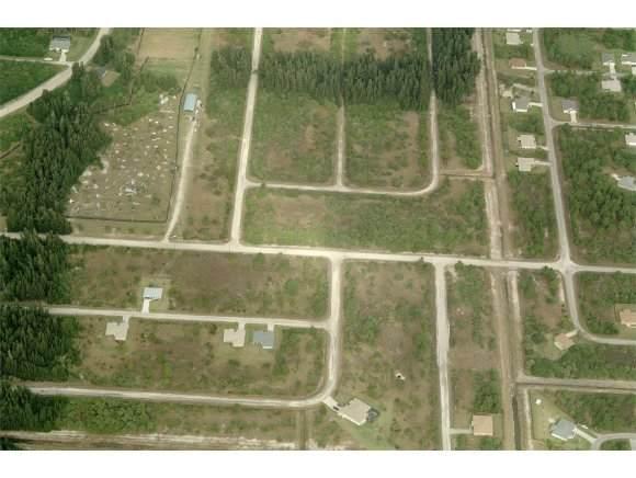 717 SW Sandpiper Street, Palm Bay, FL 32908 (MLS #889275) :: Premium Properties Real Estate Services